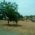 Paysage Nordique du Cameroun