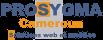 logo Prosygma